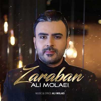 1396-Ali-Molaei-Zaraban دانلود آهنگ جدید ضربان قلبم علی مولایی